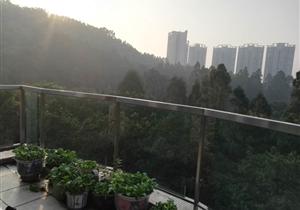 祈福新村翠湖望山湖单位 坐在家里可以看日出的房子 还送车位