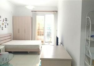 双城国际公寓 豪华装修 户型方正 交通便利 看房方便